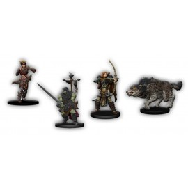 Pathfinder Iconic Heroes Box 5