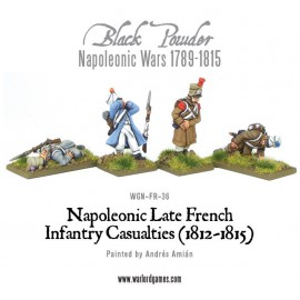 Napoleonic Late French Infantry Casualties (1812-1815)