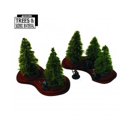 5x Young Fir Trees