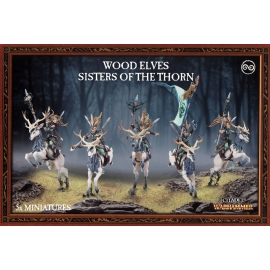 Wood Elves Sisters of the Thorn / Wild Riders