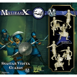 Shastar Vidiya Guards
