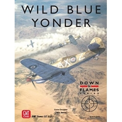 Wild Blue Yonder: Plane vs Plane Air Combat 1939 - 1945 Down in Flames Series