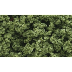 Light Green Foliage Clusters