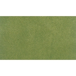 """14.125x12.5"""" Spring Ready Grass Project Sheet"""