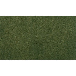 "14.125x12.5"" Forest Ready Grass Project Sheet"