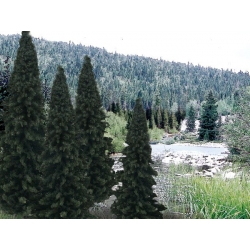 """4"""" - 6"""" Ready Made Evergreen Value Pack (13 / Pk)"""