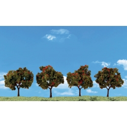 "2"" - 3"" Classic Apple Trees (4 / Pk)"