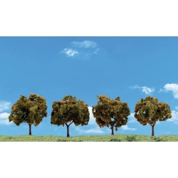 "2"" - 3"" Classic Orange Trees (4 / Pk)"