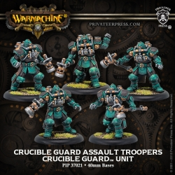 Crucible Guard Assault Troopers