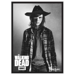 The Walking Dead: Carl Standard Deck Protector Sleeves (50)