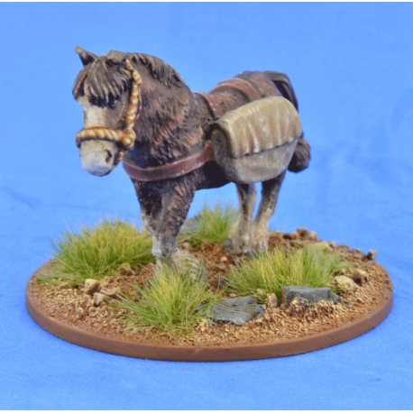 Pack Pony (Panniers)
