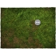 3ft x 6ft, Forest Theme Cloth Game Mat