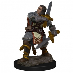 D&D Icons of the Realms Premium Figures: Human Male Paladin