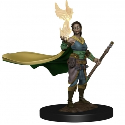 D&D Icons of the Realms Premium Figures: Elf Female Druid