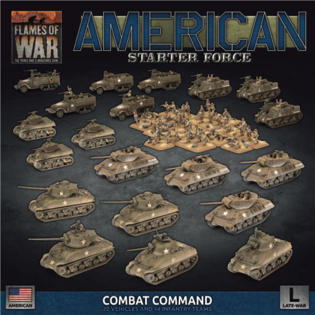 "American LW ""Combat Command"" Army Deal"