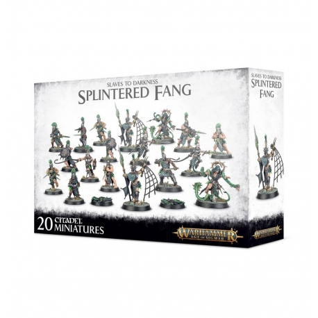 Slaves to Darkness: The Splintered Fang