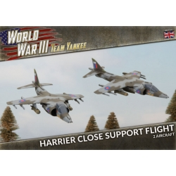 Harrier Close Support Flight