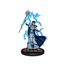 Elf Wizard Female - D&D Icons of the Realms Premium Figures