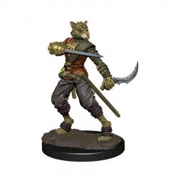Tabaxi Rogue Male