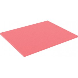 FS010Bred 345 mm x 275 mm x 10 mm colored foam for Shadowboard red