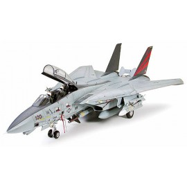 F-14A Tomcat - Black Knights