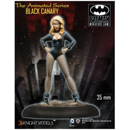 Black Canary Animated Series