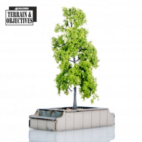 Seated Planters with Trees