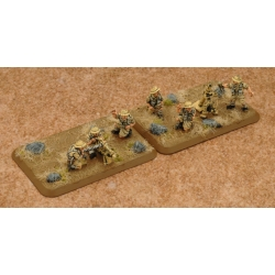 Desert Rats HMG Platoon & Mortar Section